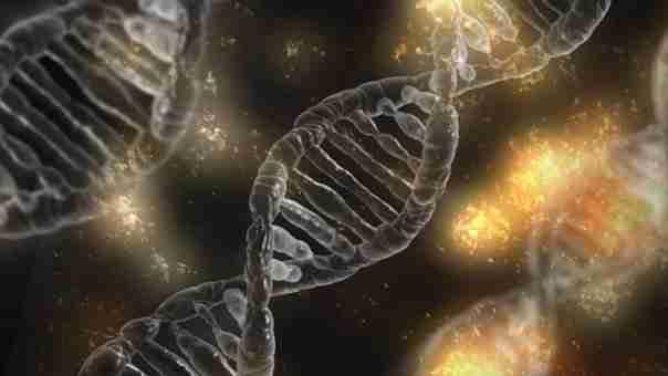 Private Stem Cell Seminars 2018